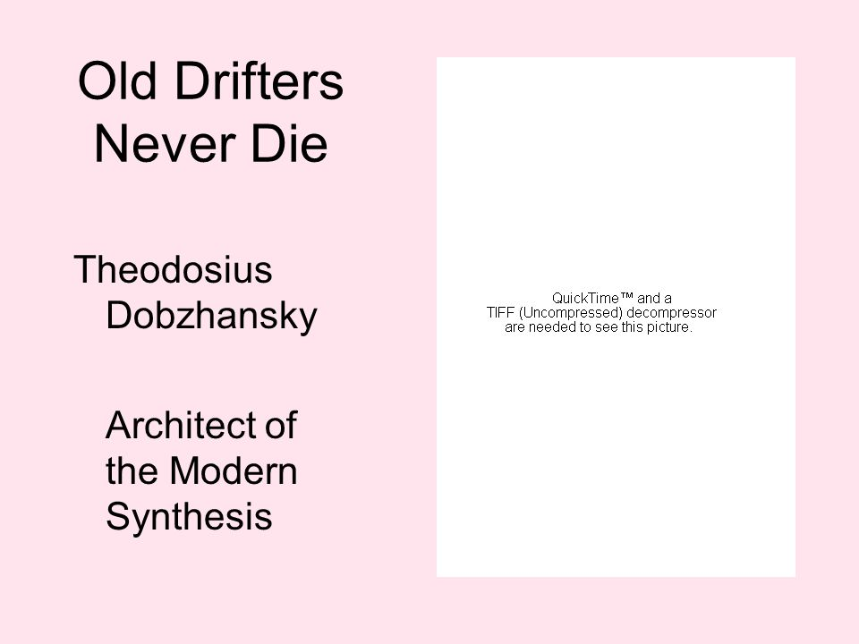 Old Drifters Never Die Theodosius Dobzhansky Architect of the Modern Synthesis