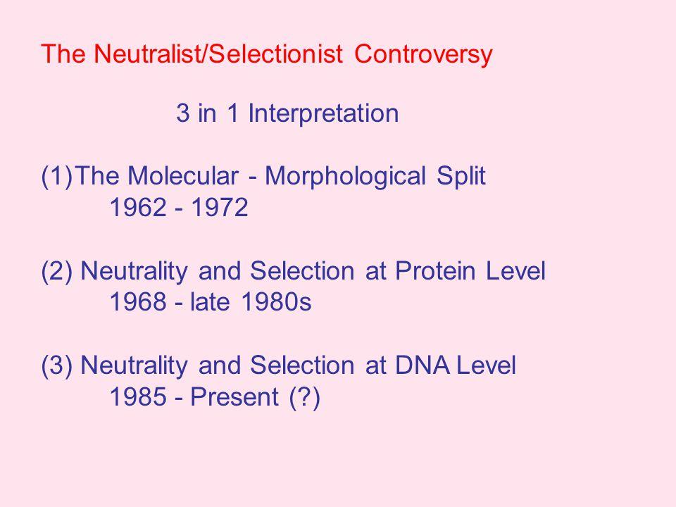 The Molecular Clock E.Zuckerkandl and L.