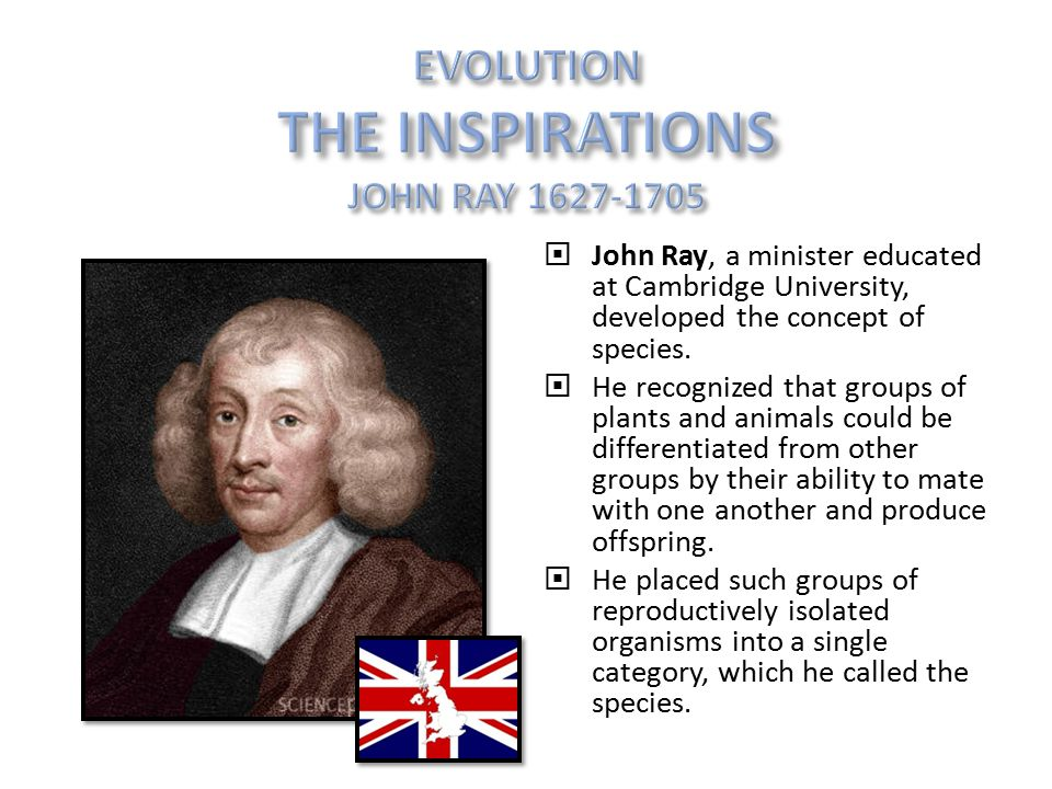  John Ray, a minister educated at Cambridge University, developed the concept of species.