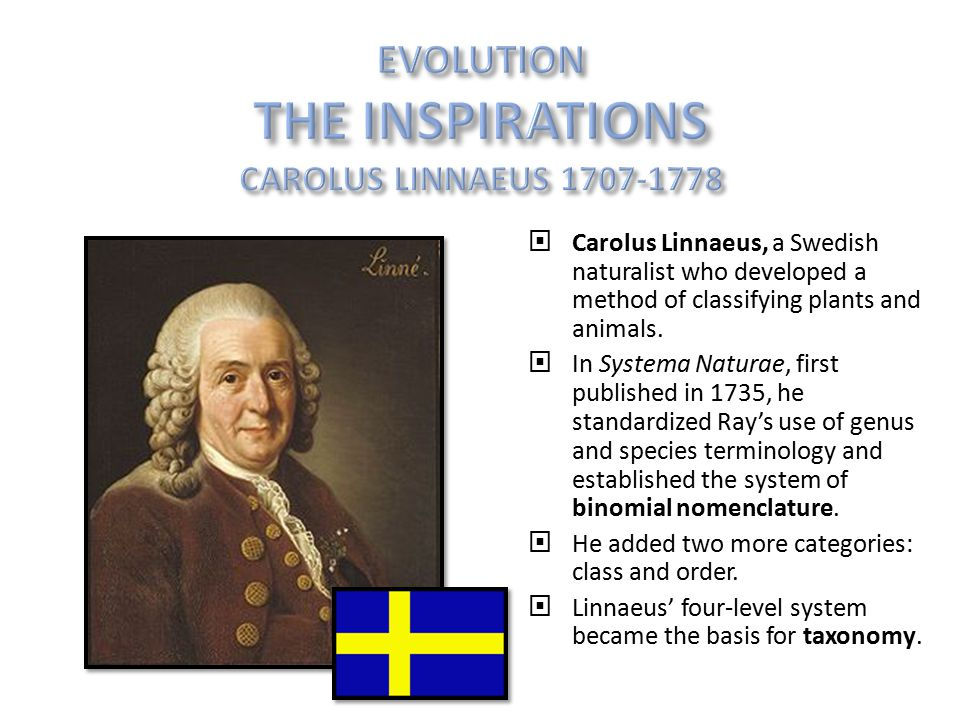 Carolus Linnaeus, a Swedish naturalist who developed a method of classifying plants and animals.  In Systema Naturae, first published in 1735, he s