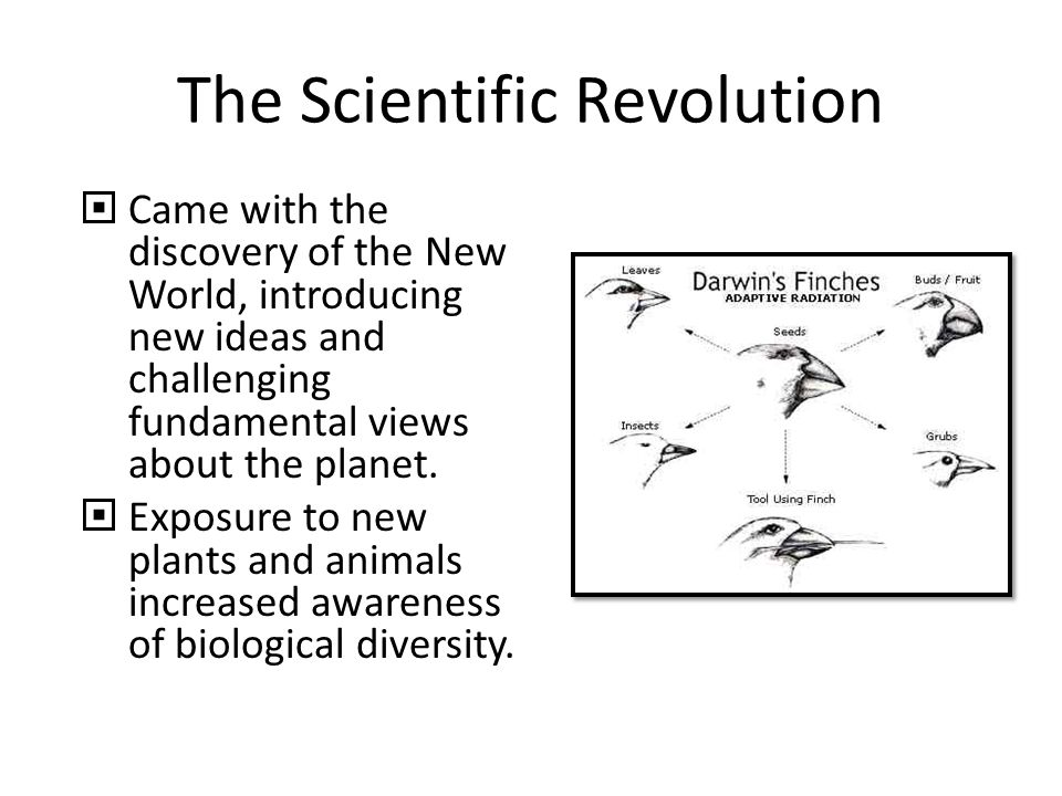 The Scientific Revolution  Came with the discovery of the New World, introducing new ideas and challenging fundamental views about the planet.