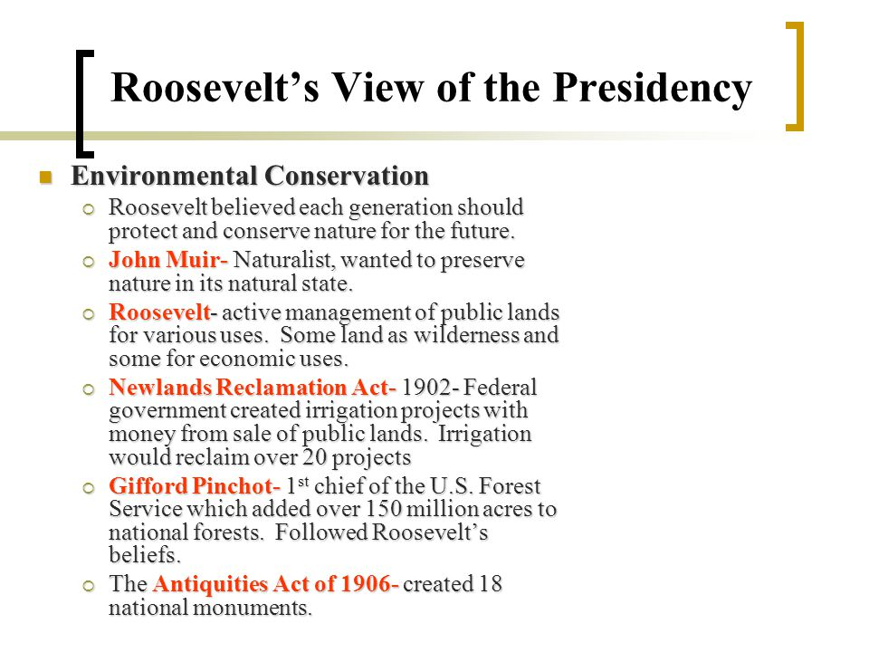 Roosevelt's View of the Presidency Environmental Conservation Environmental Conservation  Roosevelt believed each generation should protect and conserve nature for the future.