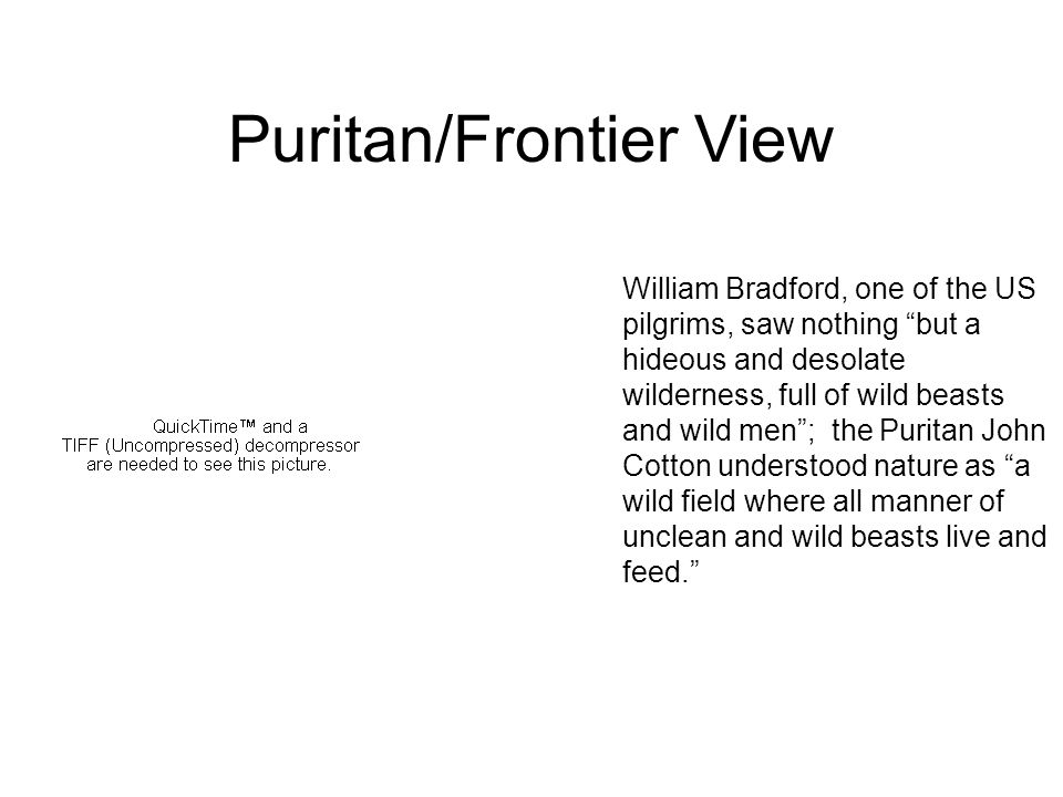 William Bradford, one of the US pilgrims, saw nothing but a hideous and desolate wilderness, full of wild beasts and wild men ; the Puritan John Cotton understood nature as a wild field where all manner of unclean and wild beasts live and feed. Puritan/Frontier View