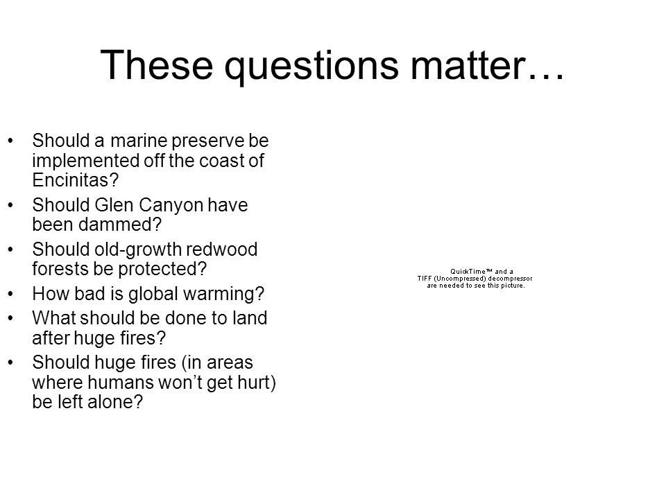 These questions matter… Should a marine preserve be implemented off the coast of Encinitas.