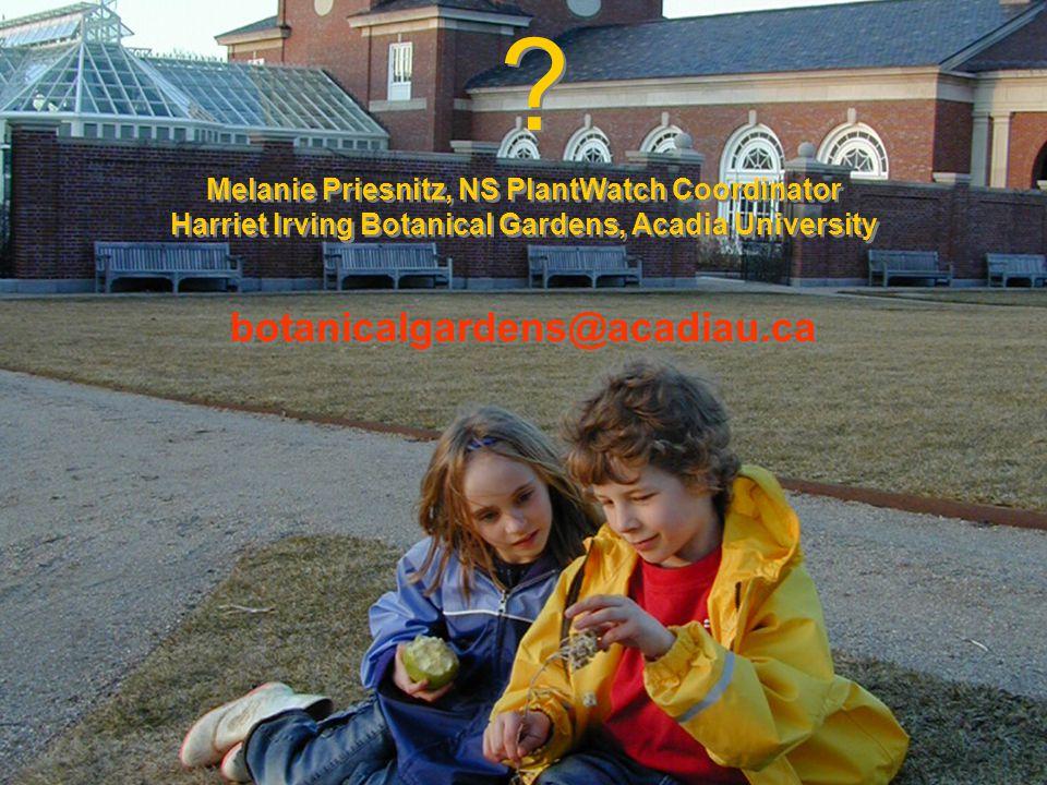 Melanie Priesnitz, NS PlantWatch Coordinator Harriet Irving Botanical Gardens, Acadia University botanicalgardens@acadiau.ca .