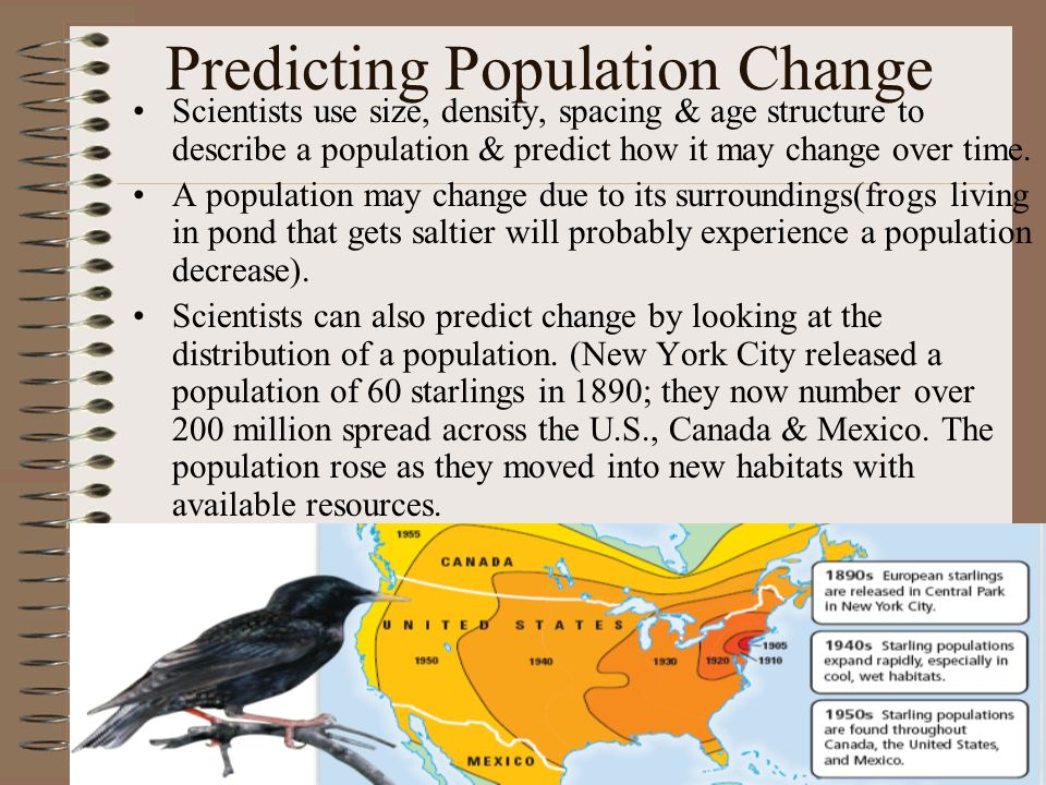 Predicting Population Change Scientists use size, density, spacing & age structure to describe a population & predict how it may change over time. A p