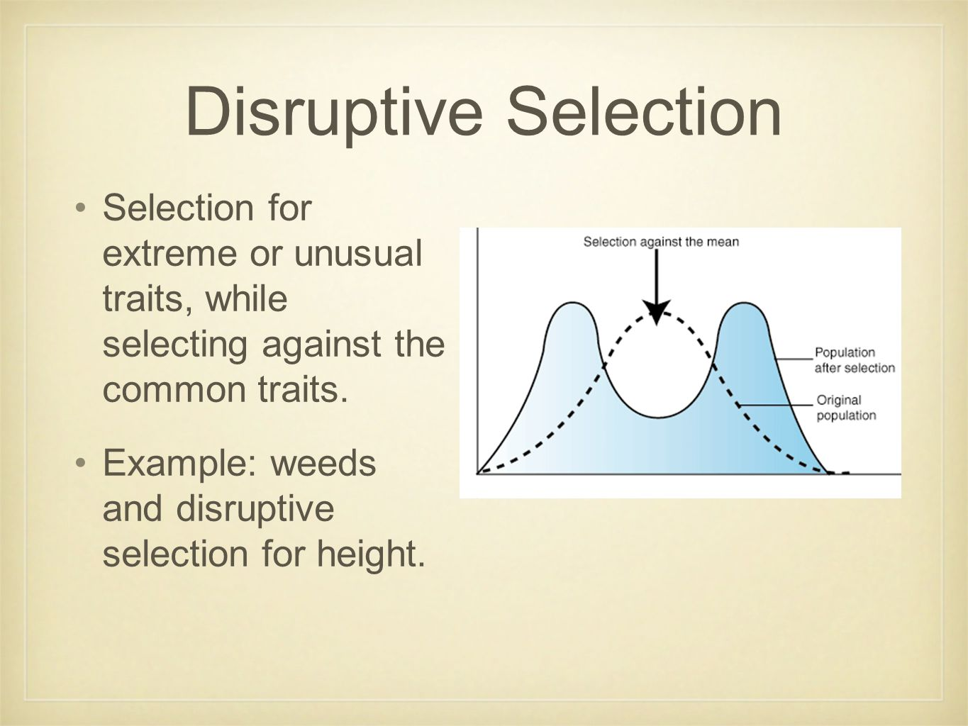Disruptive Selection Selection for extreme or unusual traits, while selecting against the common traits. Example: weeds and disruptive selection for h