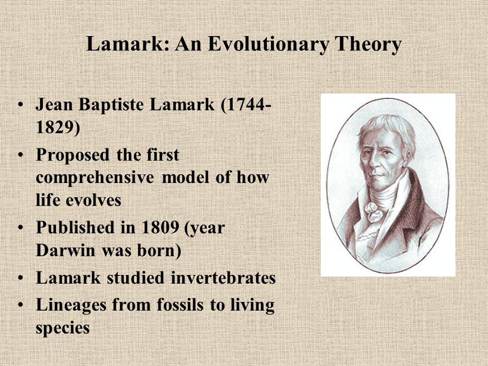Lamark: An Evolutionary Theory Jean Baptiste Lamark (1744- 1829) Proposed the first comprehensive model of how life evolves Published in 1809 (year Darwin was born) Lamark studied invertebrates Lineages from fossils to living species