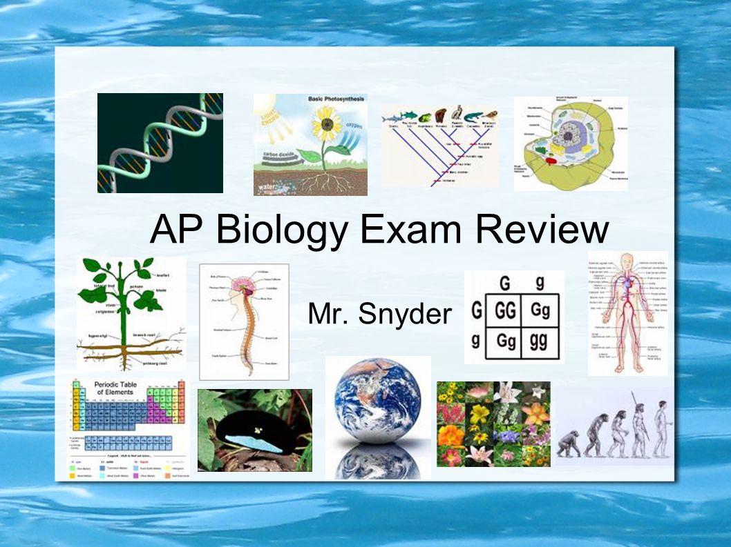 AP Biology Exam Review Mr. Snyder