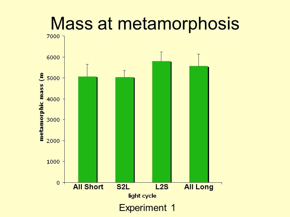Mass at metamorphosis All ShortS2LL2SAll Long Experiment 1