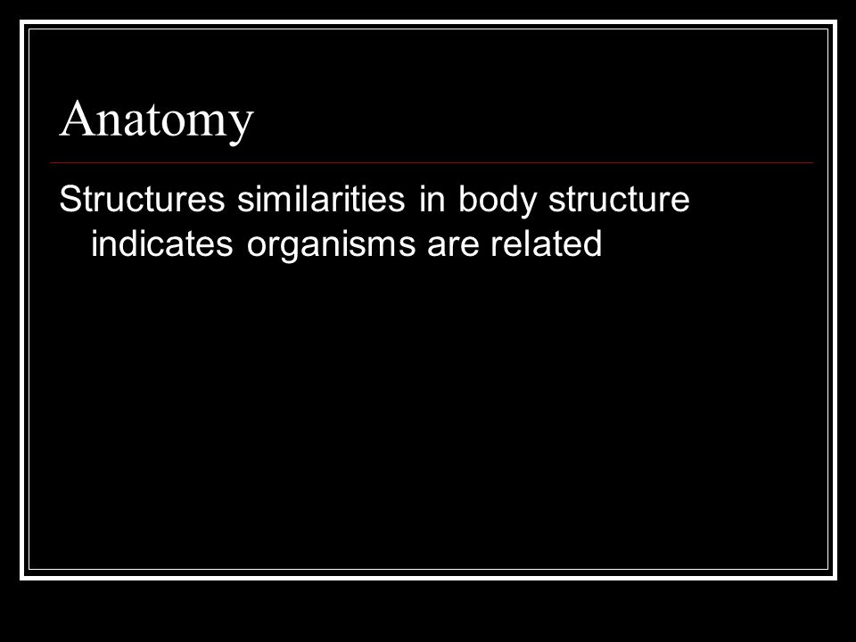 Anatomy Structures similarities in body structure indicates organisms are related