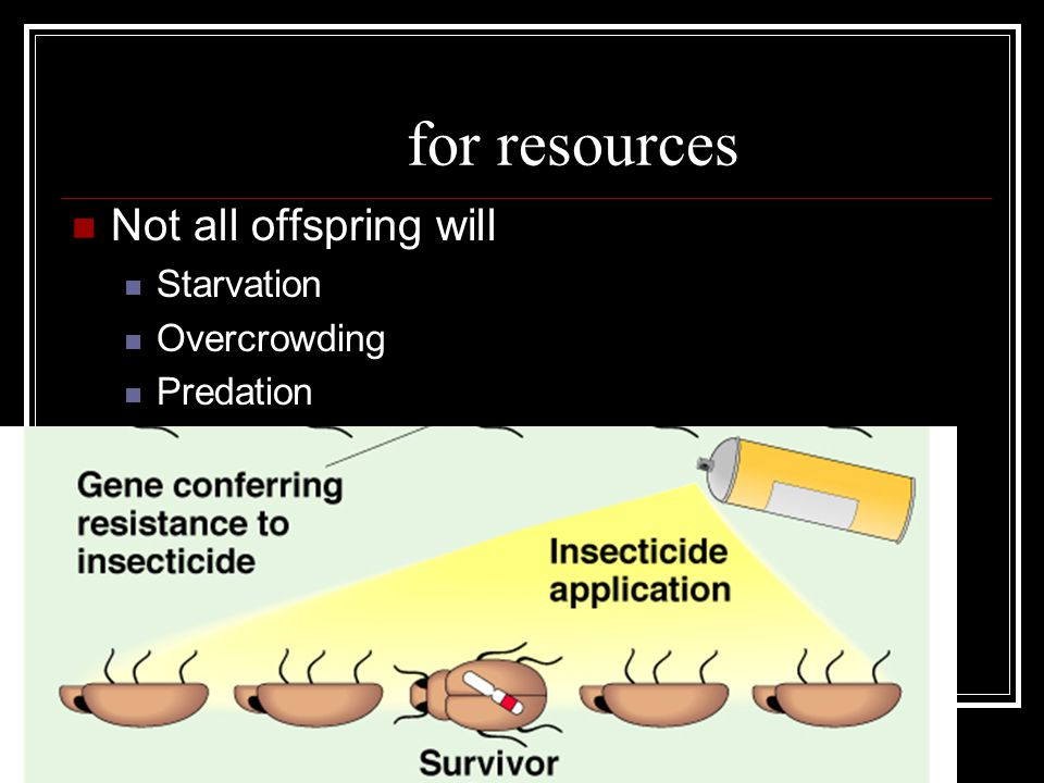 Competition for resources Not all offspring will survive Starvation Overcrowding Predation
