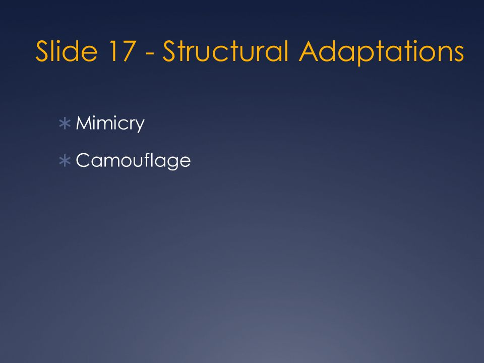 Slide 17 - Structural Adaptations  Mimicry  Camouflage