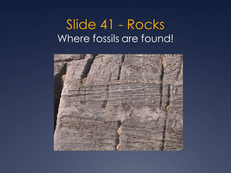 Slide 41 - Rocks Where fossils are found!