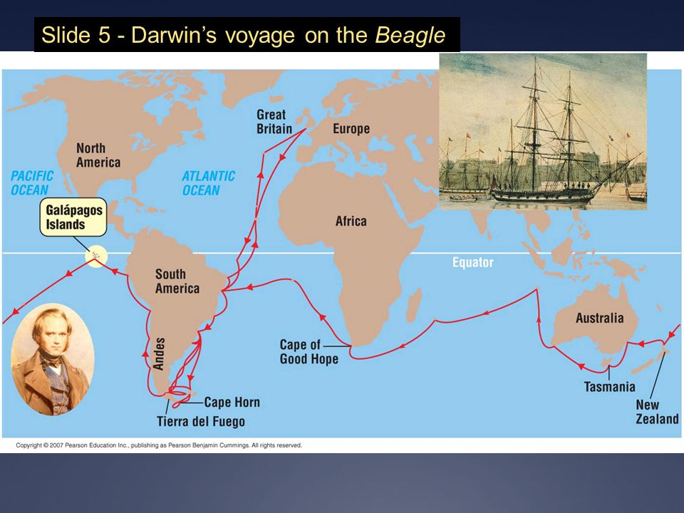 Slide 5 - Darwin's voyage on the Beagle