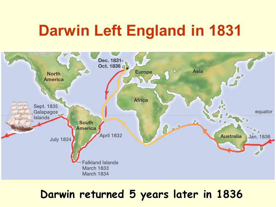 Darwin Left England in 1831 Darwin returned 5 years later in 1836