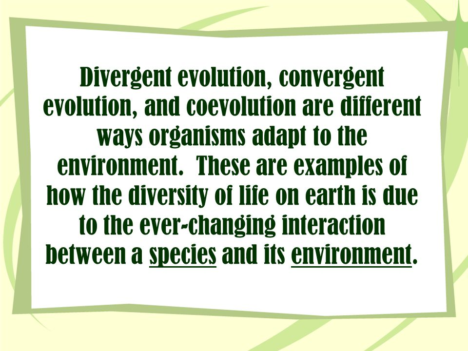 Divergent evolution, convergent evolution, and coevolution are different ways organisms adapt to the environment.