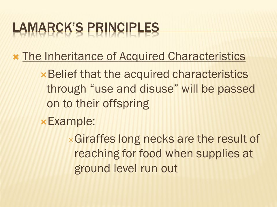  The Inheritance of Acquired Characteristics  Belief that the acquired characteristics through use and disuse will be passed on to their offspring  Example:  Giraffes long necks are the result of reaching for food when supplies at ground level run out