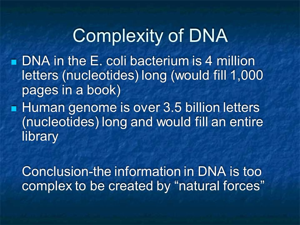 Complexity of DNA DNA in the E.
