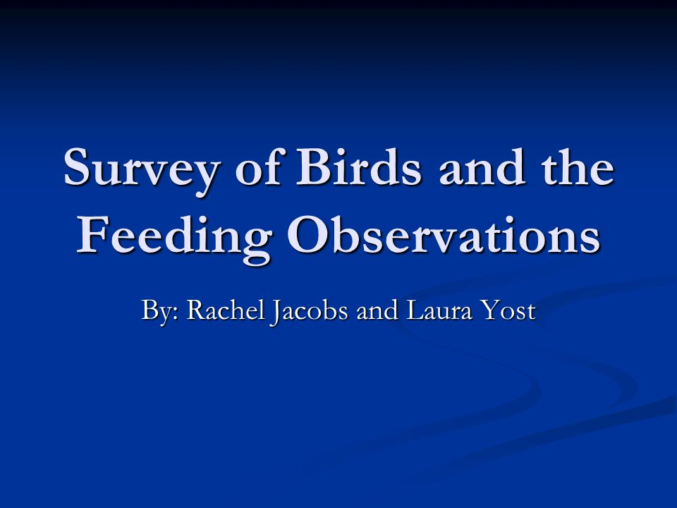 Hypothesis/Purpose Birds have food preferences Birds have food preferences Commonalities among people feeding birds Commonalities among people feeding birds Explain different types of feed and feeders Explain different types of feed and feeders