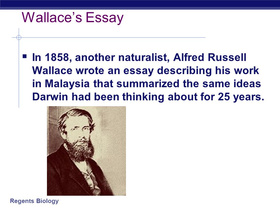 Regents Biology Darwin's Findings  After Darwin returned to England in 1836 he filled notebooks with his ideas about species diversity and the proces