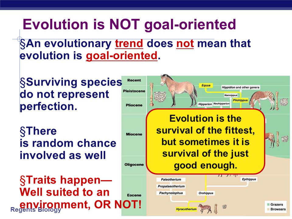 Regents Biology EVOLUTION IS CHANGE OVER A PERIOD OF TIME!
