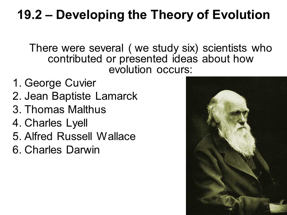 19.2 – Developing the Theory of Evolution There were several ( we study six) scientists who contributed or presented ideas about how evolution occurs: 1.George Cuvier 2.Jean Baptiste Lamarck 3.Thomas Malthus 4.Charles Lyell 5.Alfred Russell Wallace 6.Charles Darwin