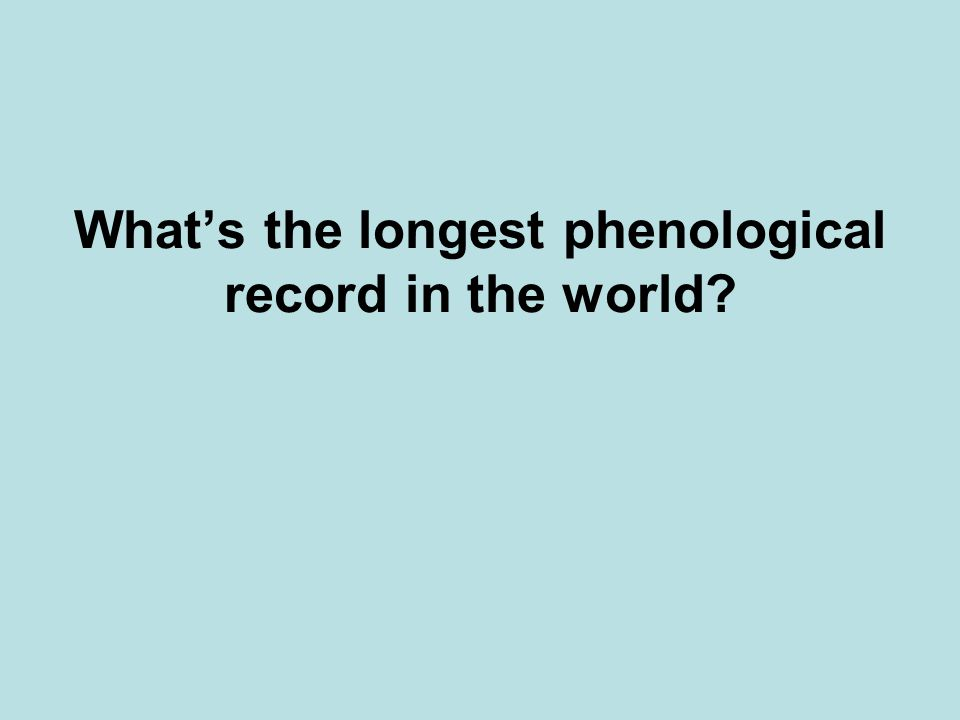 What's the longest phenological record in the world?
