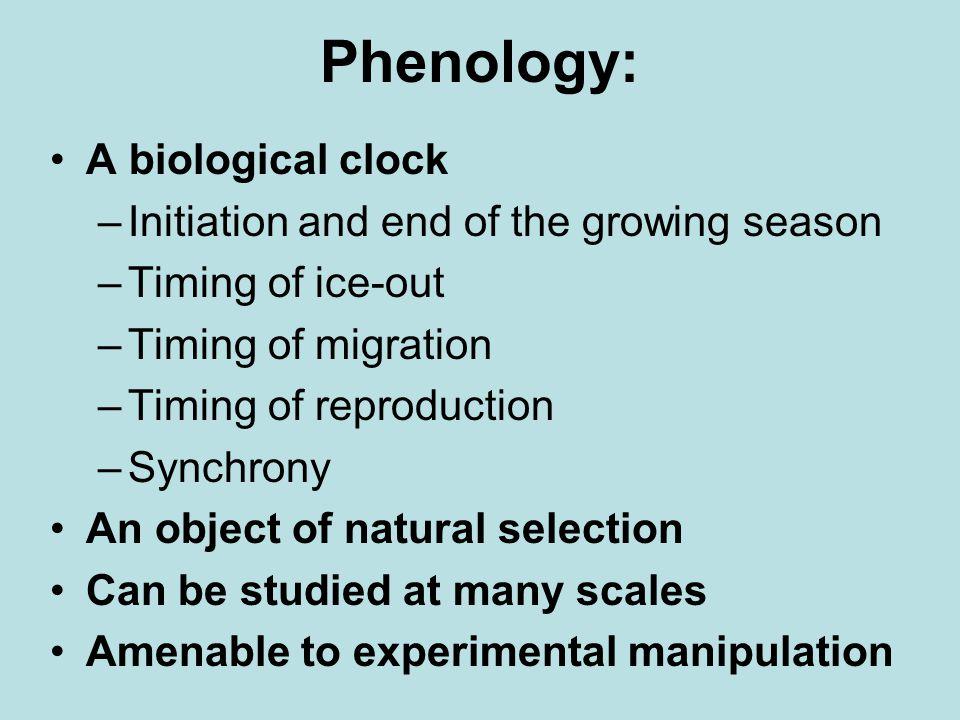 Phenology, con't.