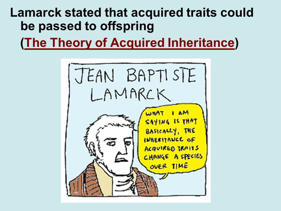 Lamarck stated that acquired traits could be passed to offspring (The Theory of Acquired Inheritance)