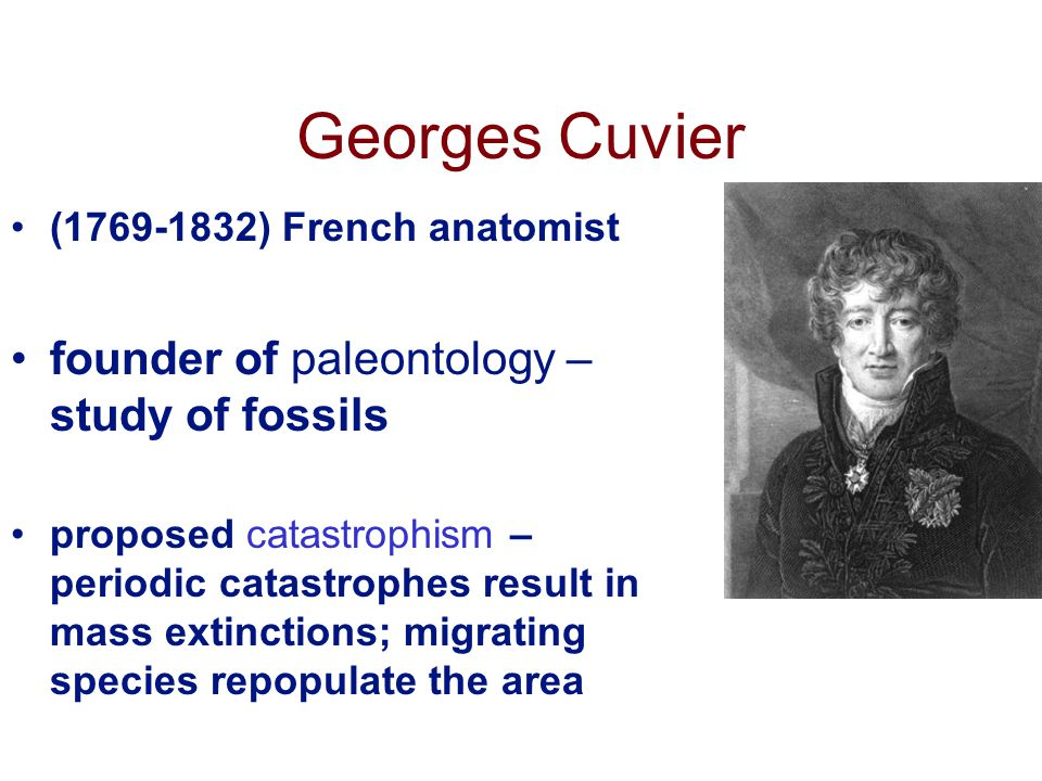 Georges Cuvier (1769-1832) French anatomist founder of paleontology – study of fossils proposed catastrophism – periodic catastrophes result in mass extinctions; migrating species repopulate the area