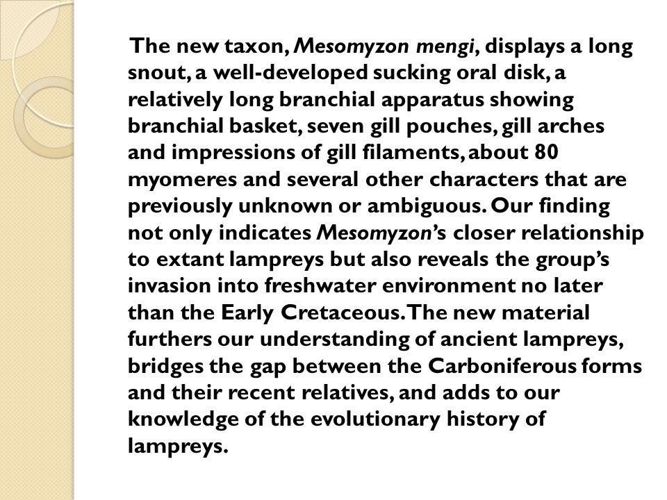 The new taxon, Mesomyzon mengi, displays a long snout, a well-developed sucking oral disk, a relatively long branchial apparatus showing branchial basket, seven gill pouches, gill arches and impressions of gill filaments, about 80 myomeres and several other characters that are previously unknown or ambiguous.