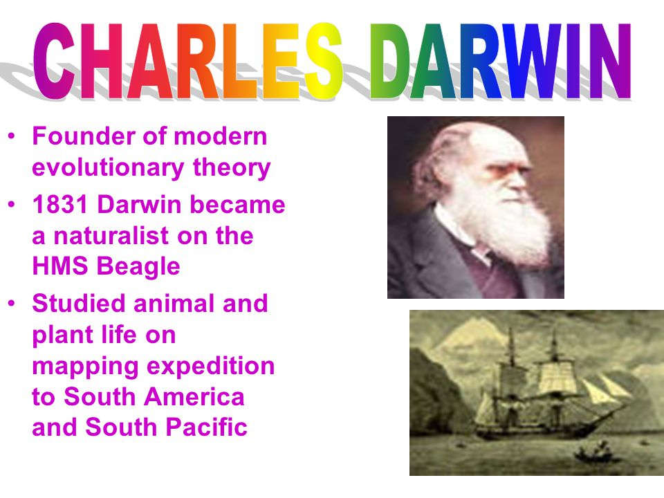 Founder of modern evolutionary theory 1831 Darwin became a naturalist on the HMS Beagle Studied animal and plant life on mapping expedition to South A