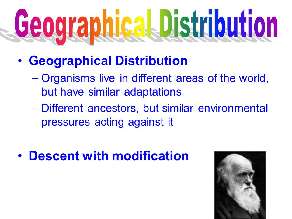 Geographical Distribution –Organisms live in different areas of the world, but have similar adaptations –Different ancestors, but similar environmenta