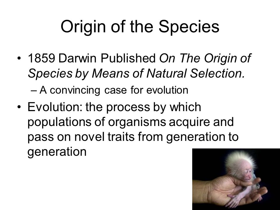 Origin of the Species 1859 Darwin Published On The Origin of Species by Means of Natural Selection.