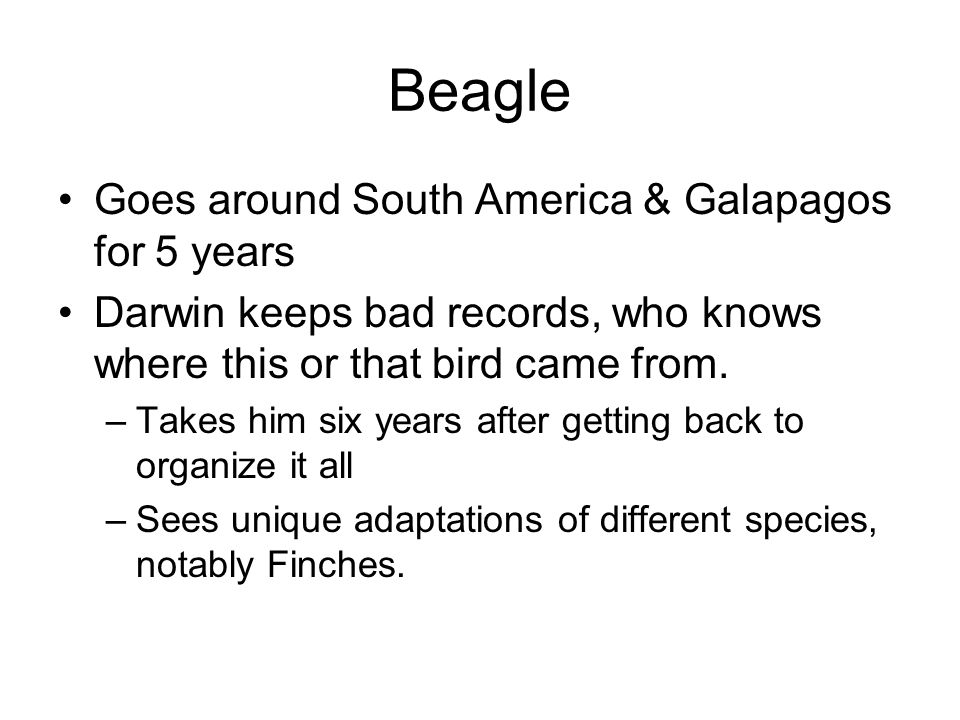 Beagle Goes around South America & Galapagos for 5 years Darwin keeps bad records, who knows where this or that bird came from.