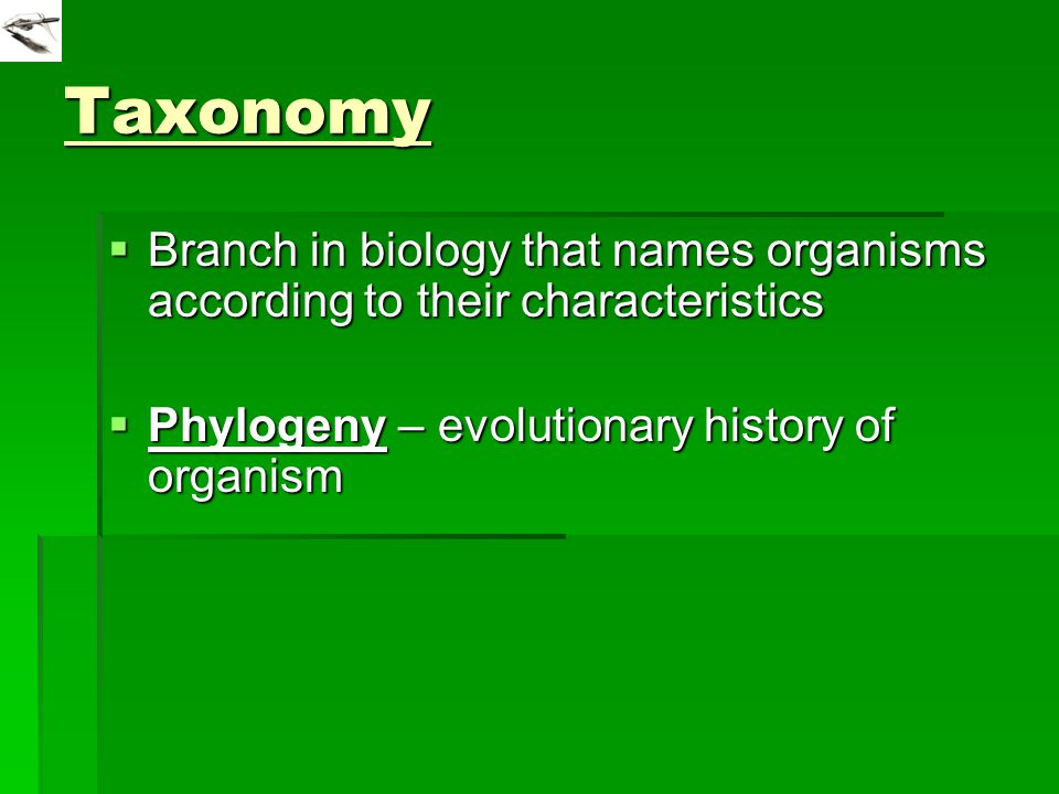 Taxonomy  Branch in biology that names organisms according to their characteristics  Phylogeny – evolutionary history of organism