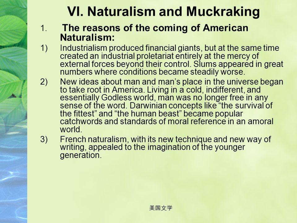 美国文学 Assignment Search for information about American Naturalism on the net or elsewhere and give an oral presentation about features of naturalism or