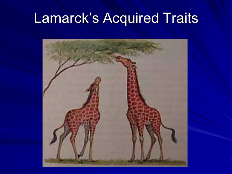 Lamarck's Acquired Traits
