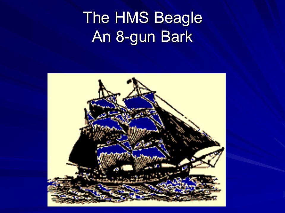 The HMS Beagle An 8-gun Bark