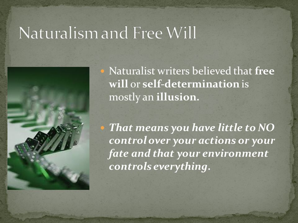Naturalist writers believed that free will or self-determination is mostly an illusion.