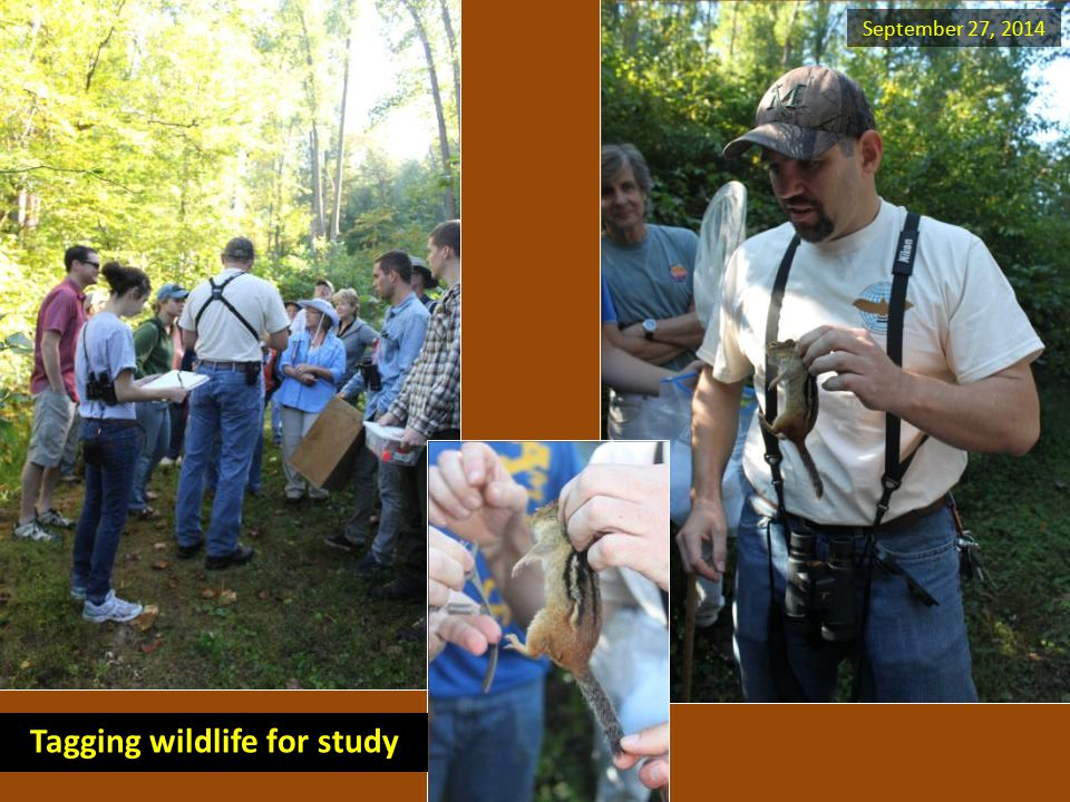 September 27, 2014 Tagging wildlife for study