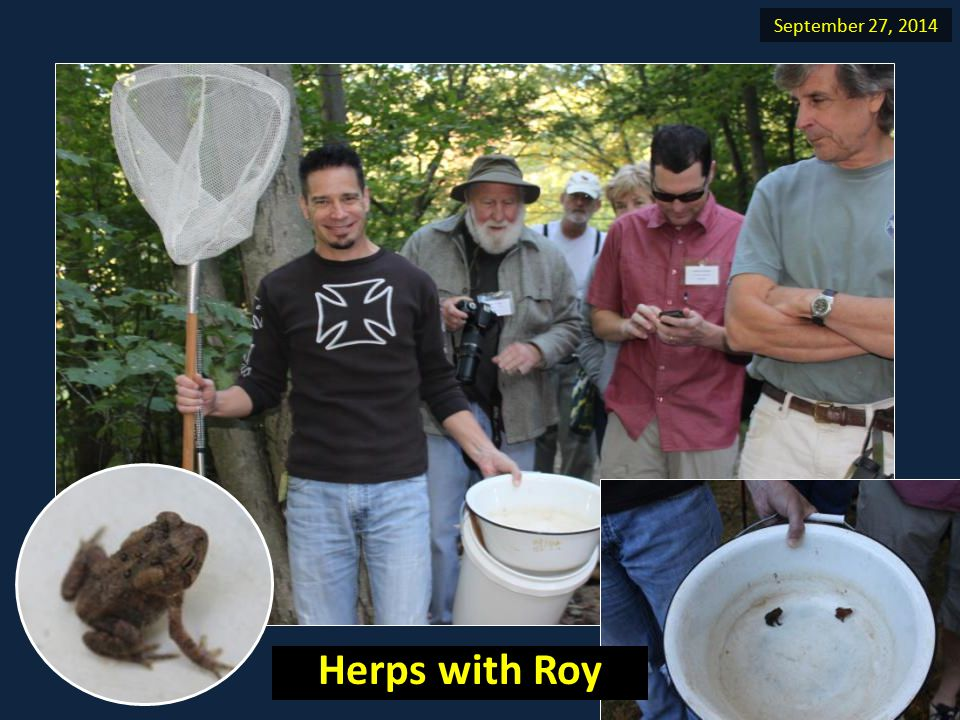 September 27, 2014 Herps with Roy