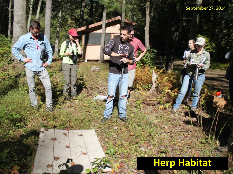 September 27, 2014 Herp Habitat