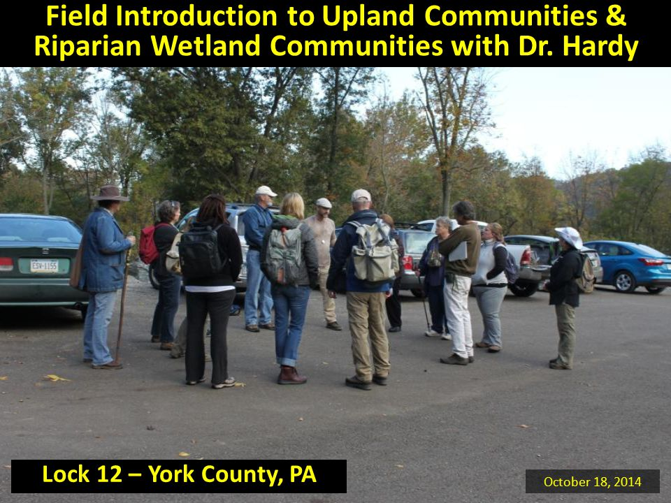 Field Introduction to Upland Communities & Riparian Wetland Communities with Dr. Hardy October 18, 2014 Lock 12 – York County, PA