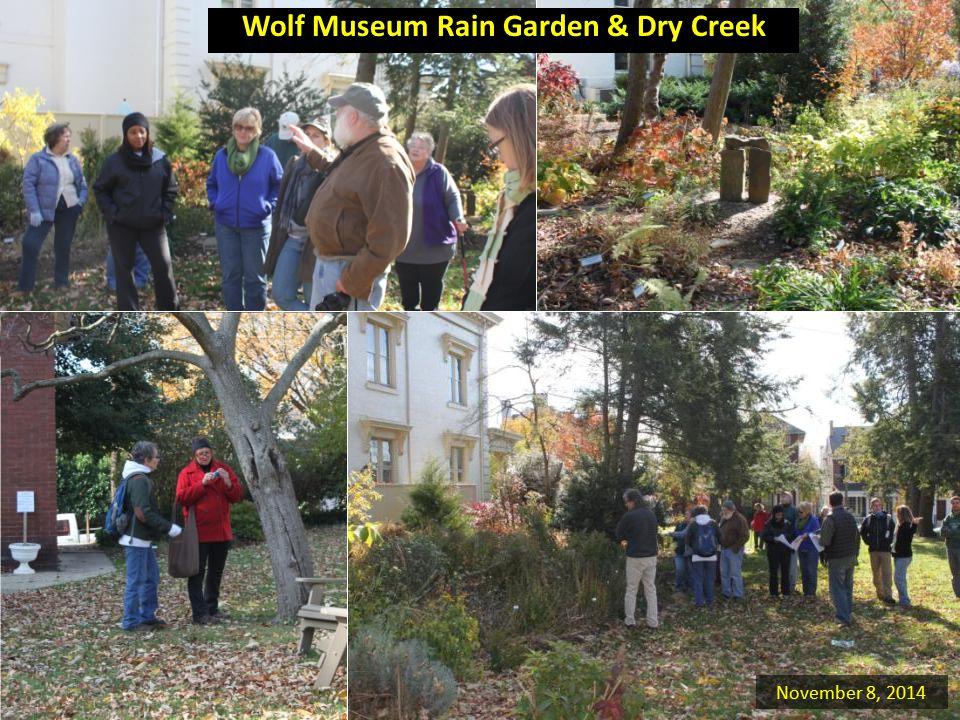 Wolf Museum Rain Garden & Dry Creek