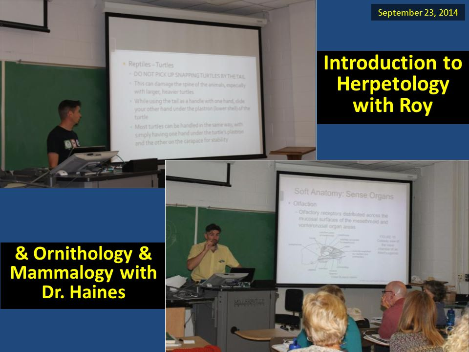 & Ornithology & Mammalogy with Dr. Haines Introduction to Herpetology with Roy September 23, 2014