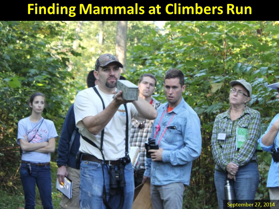 Finding Mammals at Climbers Run September 27, 2014