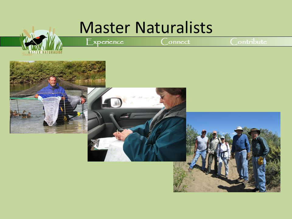 Master Naturalists