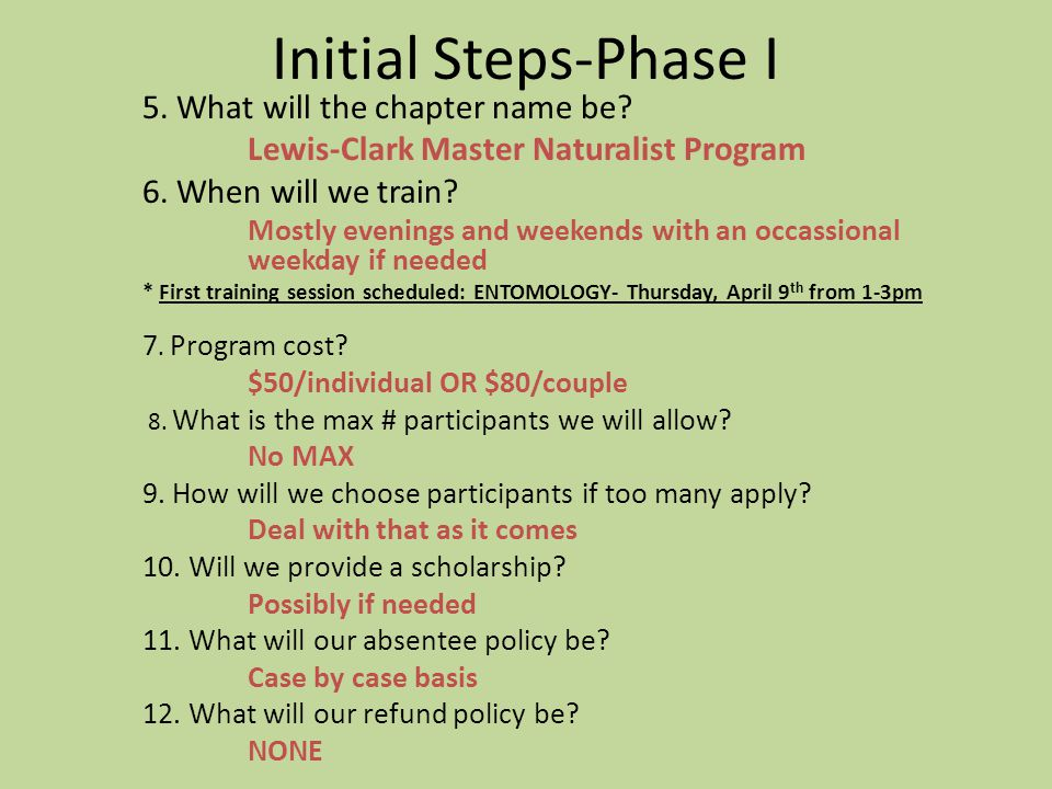 Initial Steps-Phase I 5.What will the chapter name be.